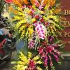 những lẵng hoa đẹp nhất