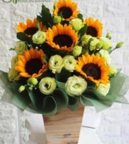 Giỏ hoa hướng dương tặng tân gia